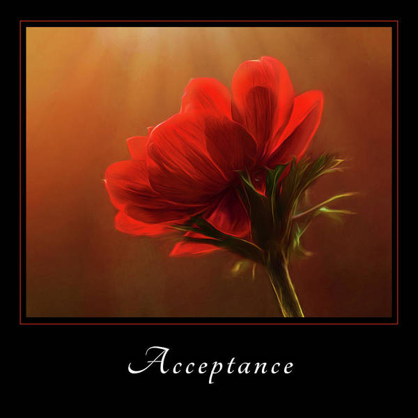 Photograph - Acceptance 3 by Mary Jo Allen