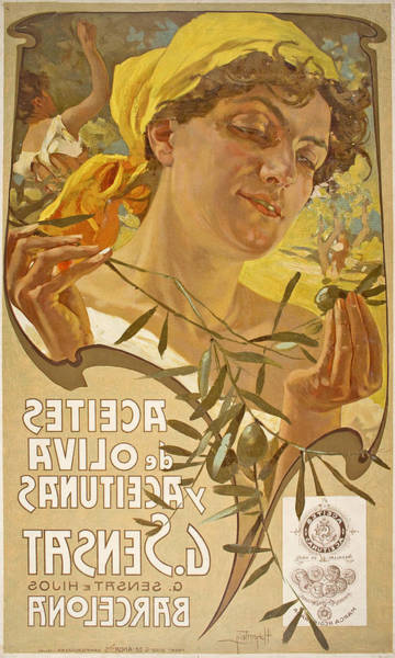 Olive Branch Drawing - Aceites De Oliva Y Aceitunas G. Sensat by Adolf Hohenstein