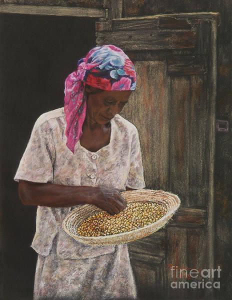 Pastel - Acklins Corn by Roshanne Minnis-Eyma