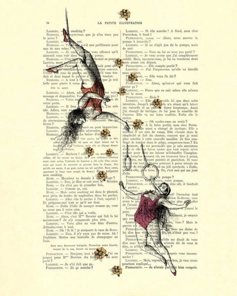 Acrobat Wall Art - Digital Art - Acrobatics Women Circusact Vintage Illustration On Book Page by Madame Memento