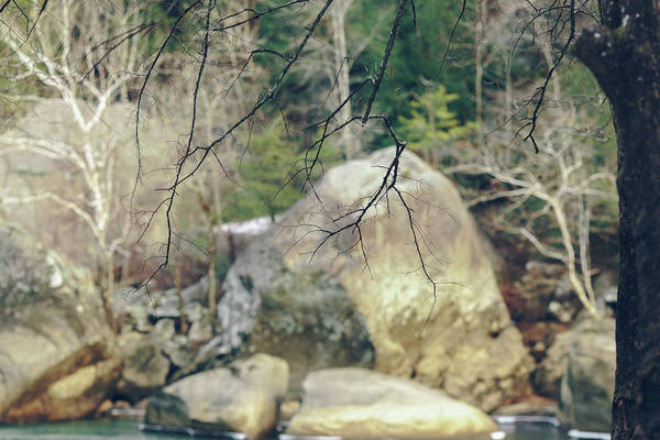 Photograph - Across From Eagle Falls by Amber Flowers
