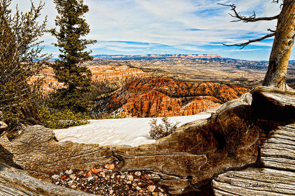 Photograph - Across The Canyon by Christopher Holmes