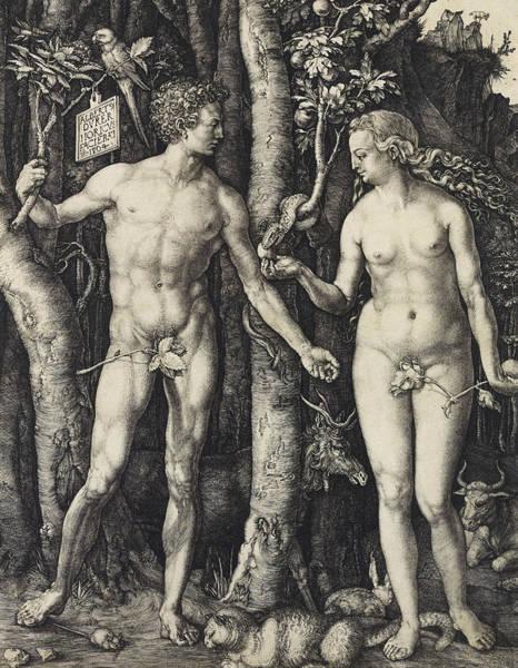 Relief - Adam And Eve  by Albrecht Durer