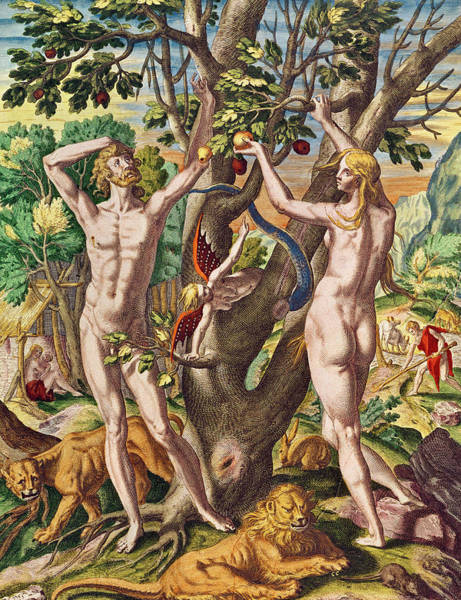 Adam And Eve Wall Art - Painting - Adam And Eve by Theodore de Bry