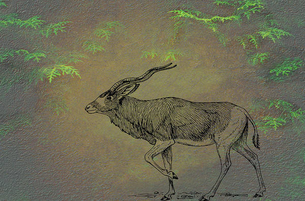 Mixed Media - Addax Antelope by Movie Poster Prints