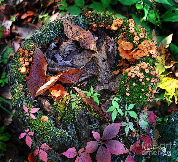 Diane Berry Wall Art - Digital Art - Adirondack Autumn Bouquet by Diane E Berry