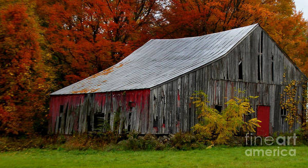 Diane Berry Photograph - Adirondack Barn IIi by Diane E Berry