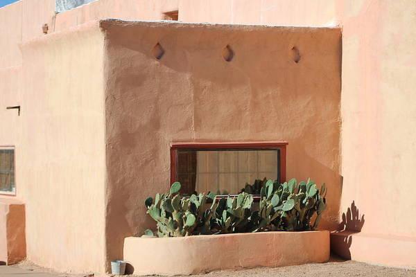 Photograph - Adobe And Cactus by Colleen Cornelius