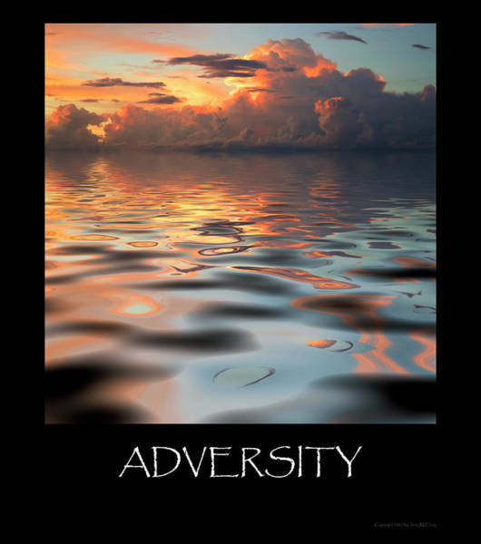 Wall Art - Photograph - Adversity by Jerry McElroy