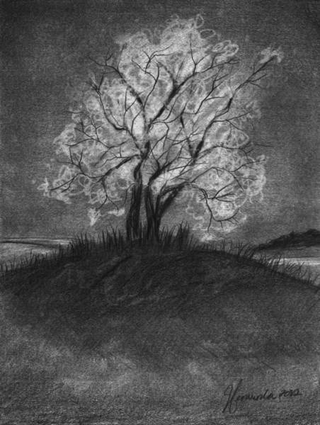 Night Time Drawing - Advice From A Tree by J Ferwerda