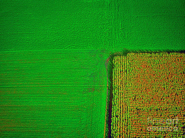 Photograph - Aerial Farm Mchenry Il  by Tom Jelen