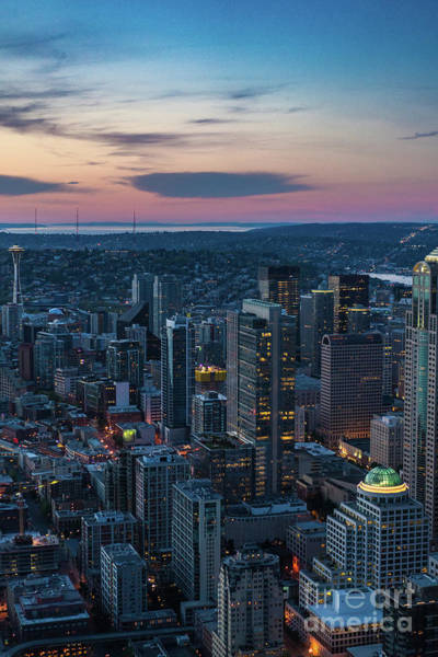 Safeco Field Photograph - Aerial Seattle Downtown Buildings Leading To The Space Needle by Mike Reid