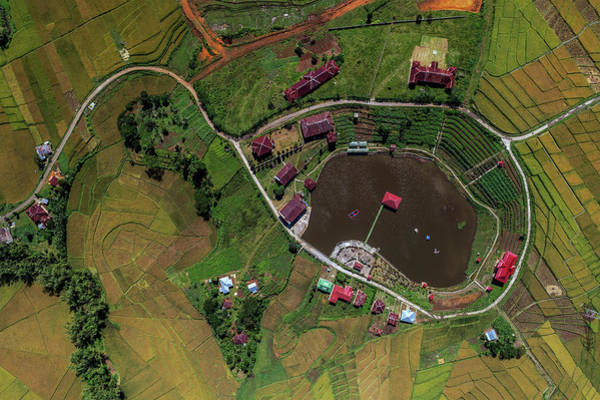 Photograph - aerial view Paddy field by Pradeep Raja PRINTS