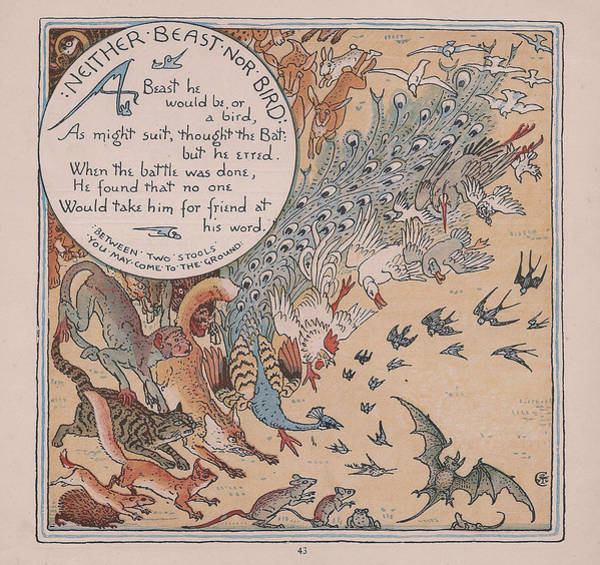 Boho Chic Drawing - Aesops Fables Neither Beast Nor Bird by Victorian Illustrator
