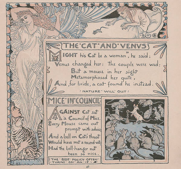 Boho Chic Drawing - Aesops Fables The Cat And Venus by Victorian Illustrator
