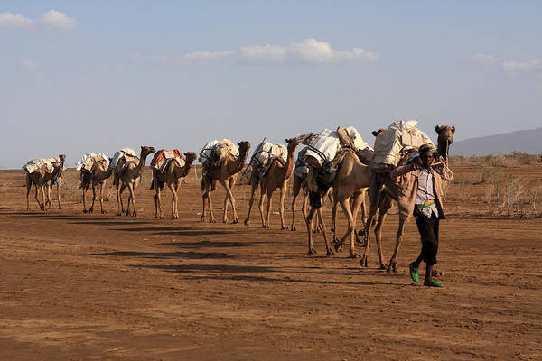 Photograph - Afar People Of Ethiopia by Aidan Moran