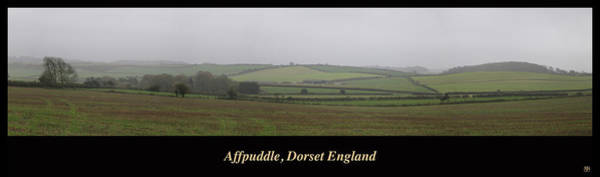 Photograph - Affpuddle by John Meader