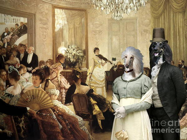 Sighthound Wall Art - Painting - Afghan Hound-the Concert  Canvas Fine Art Print by Sandra Sij