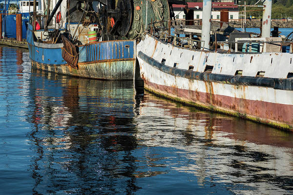 Photograph - Afloat At The Dock by Robert Potts
