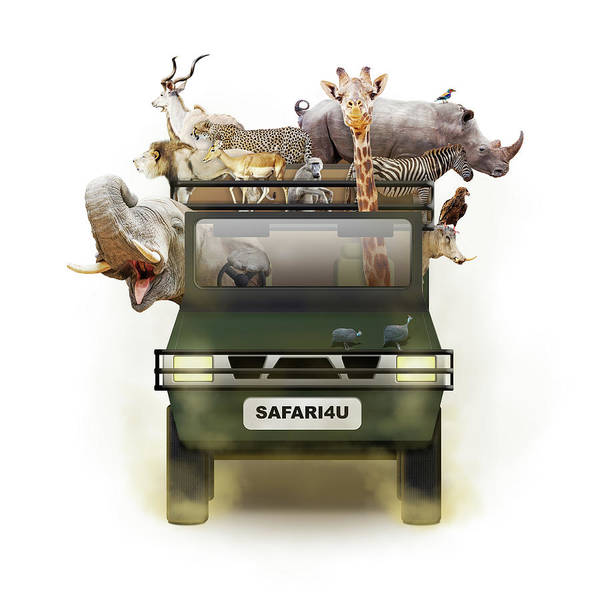 Photograph - African Animals In Safari Tour Vehicle by Susan Schmitz