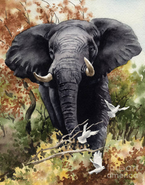 Wall Art - Painting - African Elephant by David Rogers