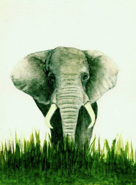 Wall Art - Painting - African Elephant by Michael Vigliotti