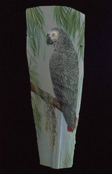 Painting - African Grey by Nancy Lauby