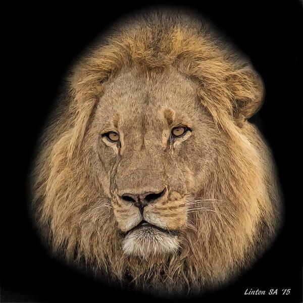 Digital Art - African Lion 2 by Larry Linton