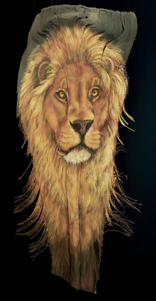 Painting - African Lion by Nancy Lauby