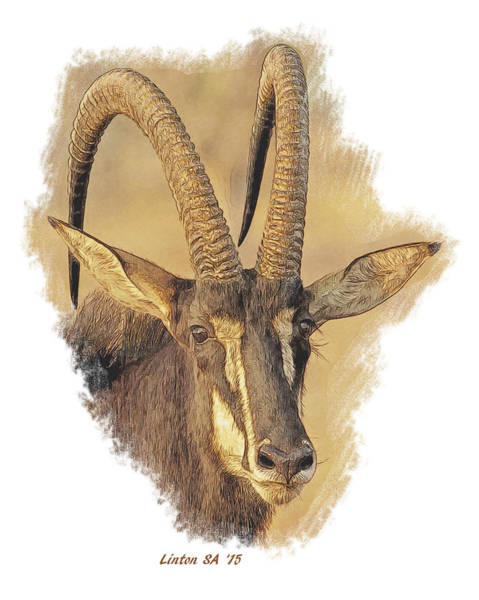 Digital Art - African Sable Antelope by Larry Linton