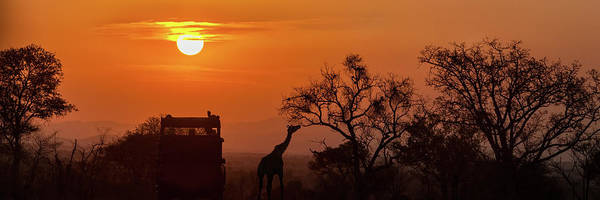 Photograph - African Safari Sunset Silhouette by Susan Schmitz