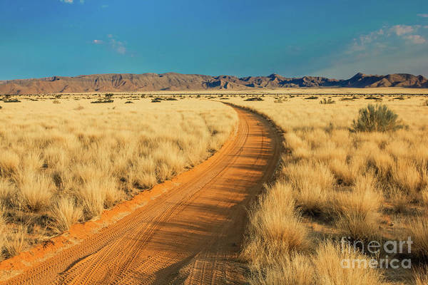 Photograph - African Sand Road by Benny Marty