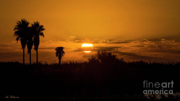 Photograph -  African Style Sunset by Arik Baltinester