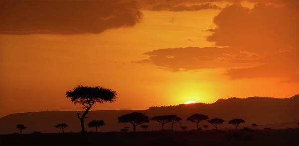 Photograph - African Sunrise by Sebastian Musial
