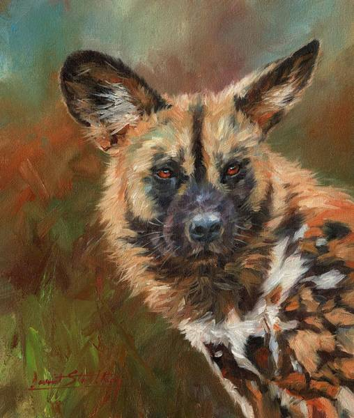 Painting - African Wild Dog Portrait by David Stribbling