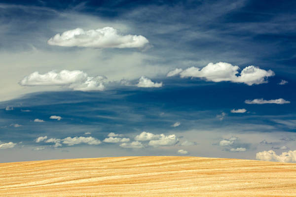 Montana Photograph - After Harvest by Todd Klassy