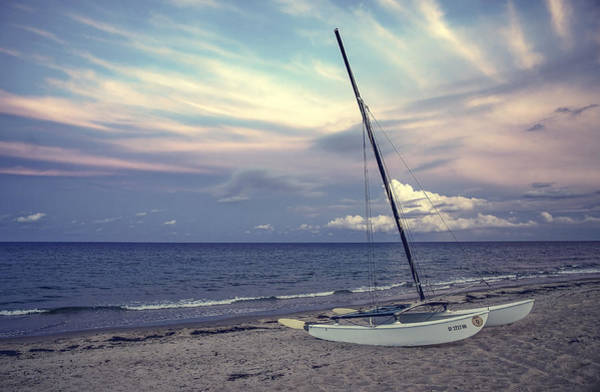 Wall Art - Photograph - After Storm by Hector Lincz