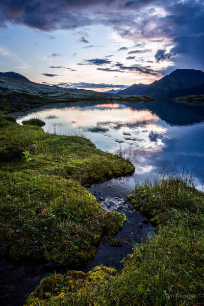 Photograph - After Sunset On Grizzly Bear Lake by Tim Newton