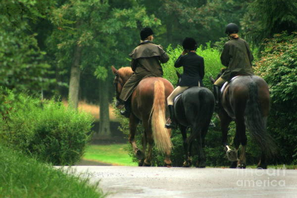 Photograph - After The Fox Hunt by Angela Rath