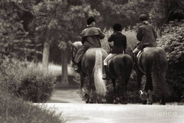 Photograph - After The Fox Hunt Black And White by Angela Rath