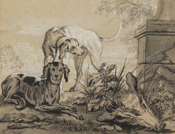 Jeans Drawing - After The Hunt - Two Hounds Beside A Boar's Head by Jean-Baptiste Oudry