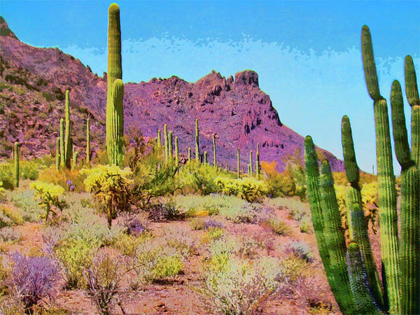 Cactus Mixed Media - After The Rain by Dominic Piperata