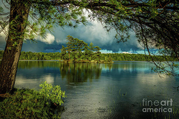 Photograph - After The Rain by Roger Monahan