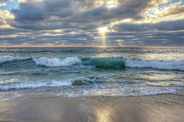 Wall Art - Photograph - After The Storm by Ann Patterson