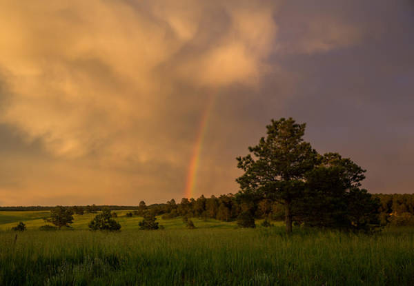 Douglas County Wall Art - Photograph - After The Storm by Bridget Calip