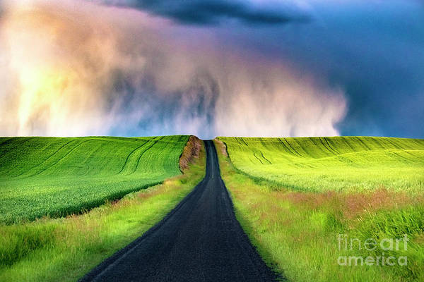Wall Art - Photograph - After The Storm by Katya Horner