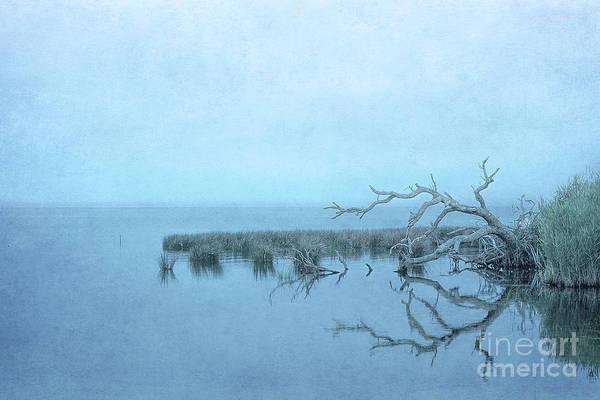 Wall Art - Digital Art - After The Storm by Randy Steele