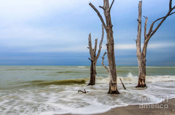 Photograph - After The Storms by Karin Pinkham
