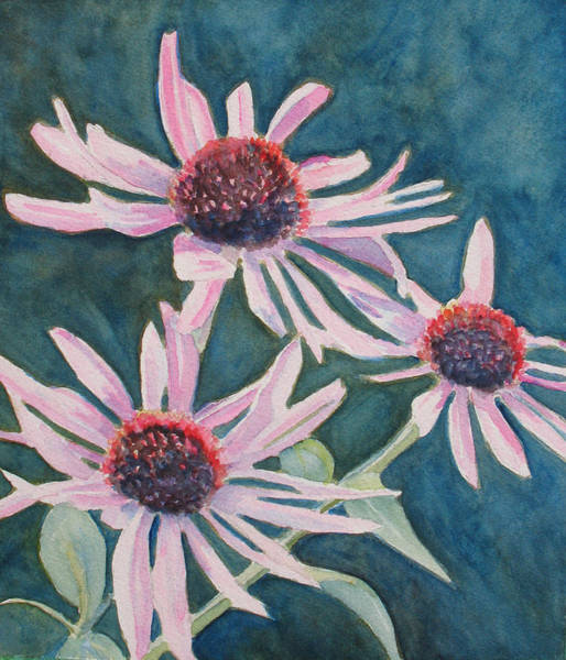 Coneflower Painting - Afterglow II by Jenny Armitage