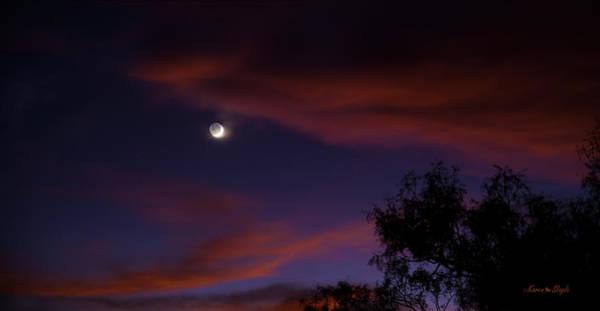 Photograph - Afterglow by Karen Slagle